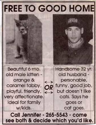 Kitty_ad